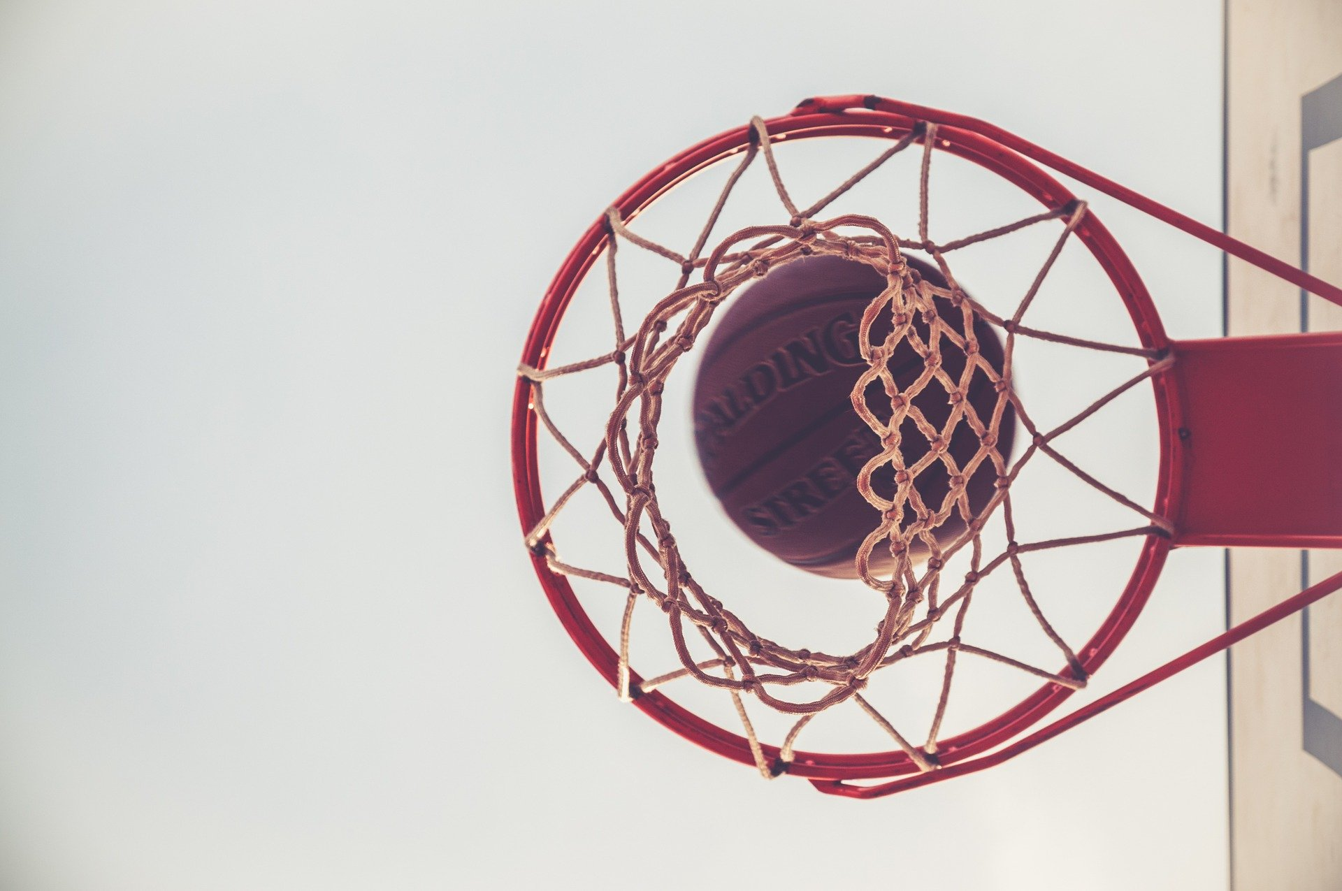 Basketball Equipment Specialists