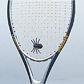 Spider Dampener